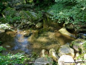 017-Riudaura, Les Estunes 11-09-2012 (17)